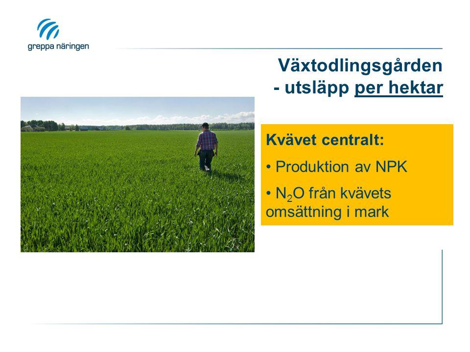 Växtodlingsgården - utsläpp per hektar Kvävet centralt: Produktion av NPK N 2 O från kvävets omsättning i mark