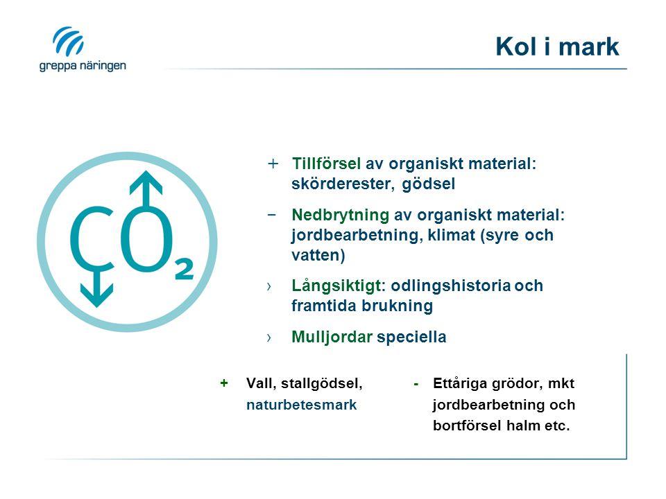 Kol i mark + Tillförsel av organiskt material: skörderester, gödsel – Nedbrytning av organiskt material: jordbearbetning, klimat (syre och vatten) ›Lå