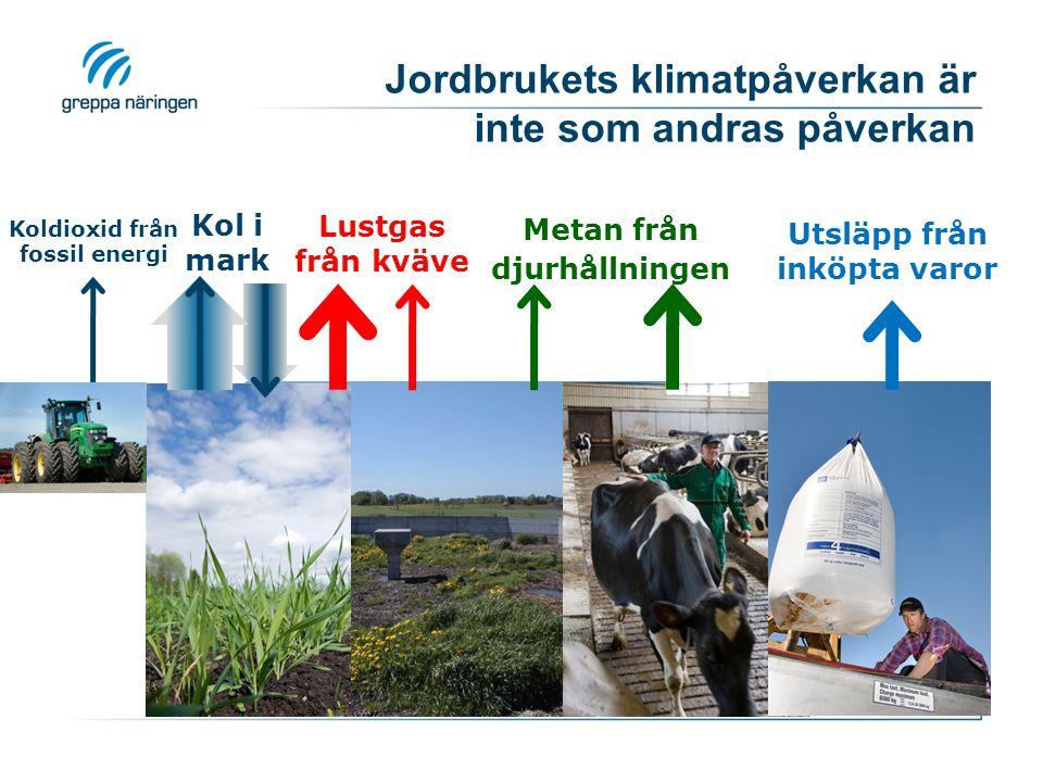 Metan från djurens fodersmältning Djurslag(kg metan/ djur och år) (ton CO 2 -ekv/ djur och år) Mjölkko120-1403-3,5 Am-/diko90-1002,2-2,5 Övrigt nötca 501,3 Får80,2 Häst10-200,3-0,6 Gris1,50,04 Jämförelse: 1 000 mil med bensinbil  ca 2 ton CO 2 -ekv 3 kg N 2 O-N/ha  1,4 ton CO 2 -ekv Inlagring 1 ton C  3,7 ton CO 2 -ekv