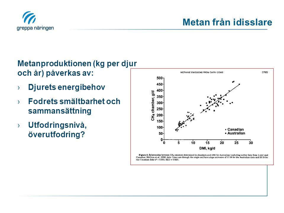 Metan från idisslare Metanproduktionen (kg per djur och år) påverkas av: ›Djurets energibehov ›Fodrets smältbarhet och sammansättning ›Utfodringsnivå,