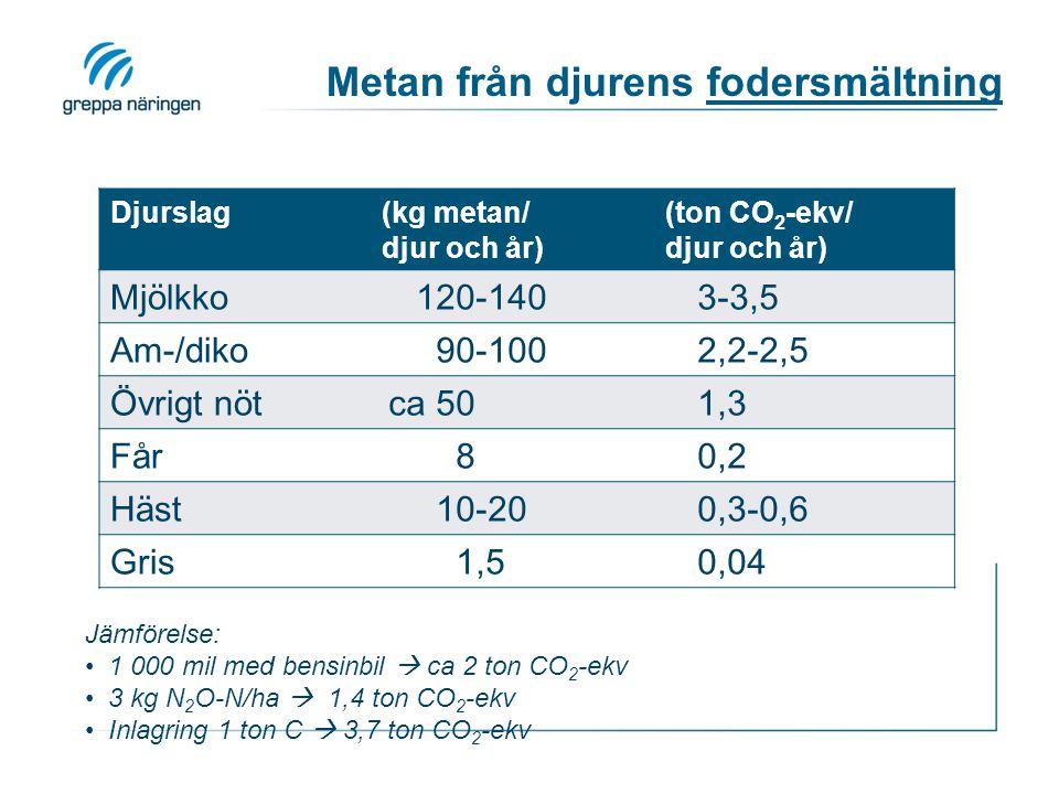 Metan från djurens fodersmältning Djurslag(kg metan/ djur och år) (ton CO 2 -ekv/ djur och år) Mjölkko120-1403-3,5 Am-/diko90-1002,2-2,5 Övrigt nötca