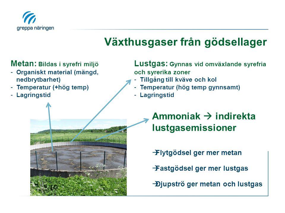 Metan: Bildas i syrefri miljö -Organiskt material (mängd, nedbrytbarhet) -Temperatur (+hög temp) -Lagringstid Lustgas: Gynnas vid omväxlande syrefria och syrerika zoner -Tillgång till kväve och kol -Temperatur (hög temp gynnsamt) -Lagringstid Ammoniak  indirekta lustgasemissioner  Flytgödsel ger mer metan  Fastgödsel ger mer lustgas  Djupströ ger metan och lustgas