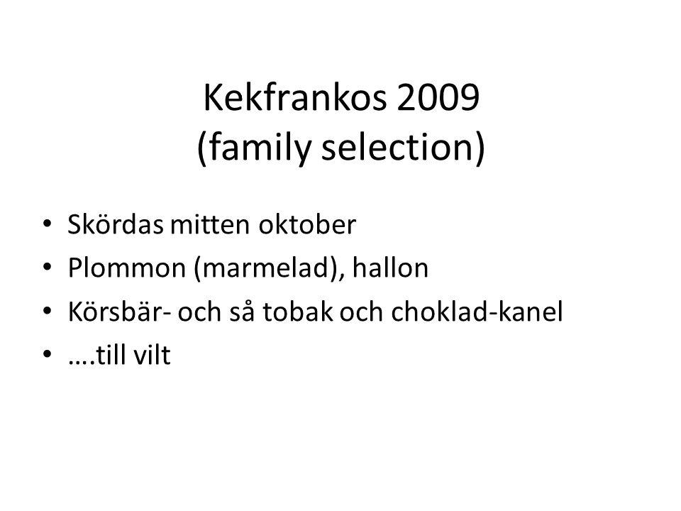 Kekfrankos 2009 (family selection) Skördas mitten oktober Plommon (marmelad), hallon Körsbär- och så tobak och choklad-kanel ….till vilt