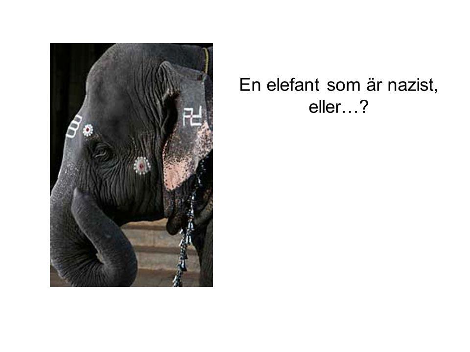 En elefant som är nazist, eller…?