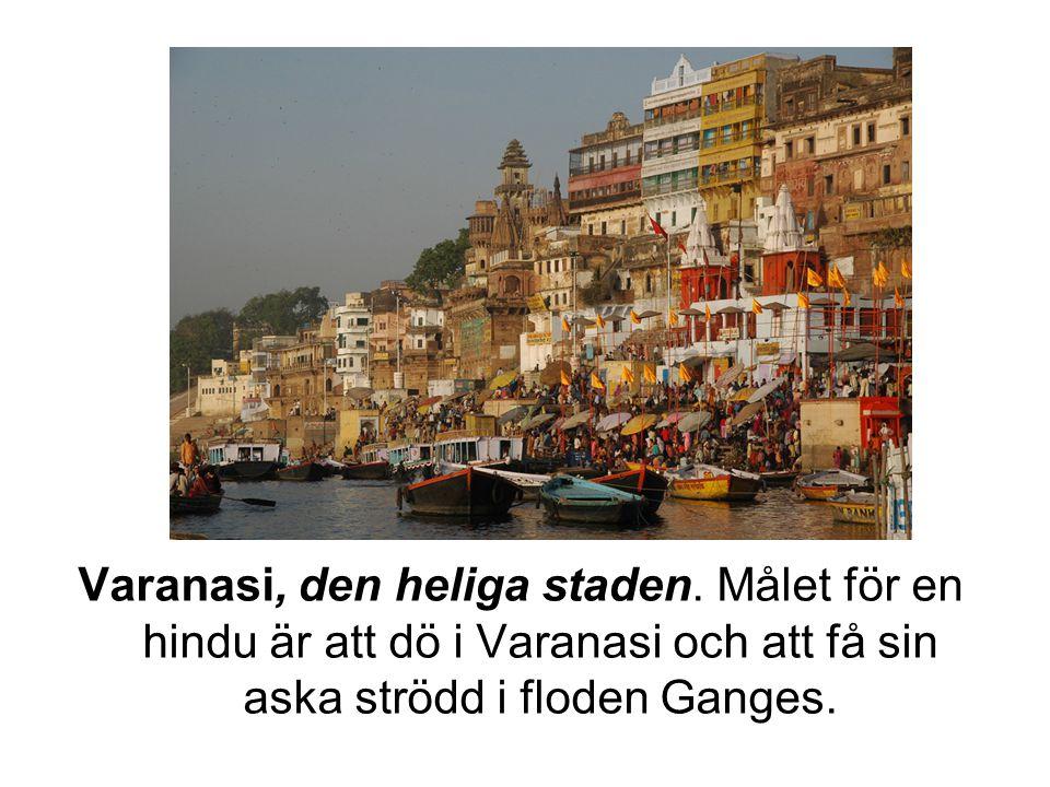 Varanasi, den heliga staden. Målet för en hindu är att dö i Varanasi och att få sin aska strödd i floden Ganges.