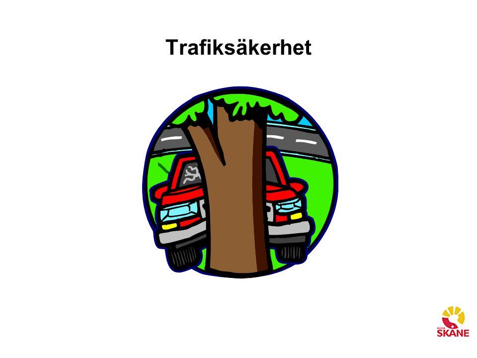 Trafiksäkerhet