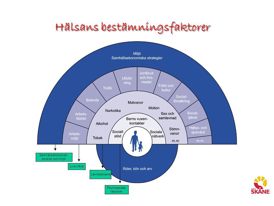 Hälsans bestämningsfaktorer Psykosociala resurser Levnadsvanor Livsvillkor Samhällsekonomisk struktur och miljö