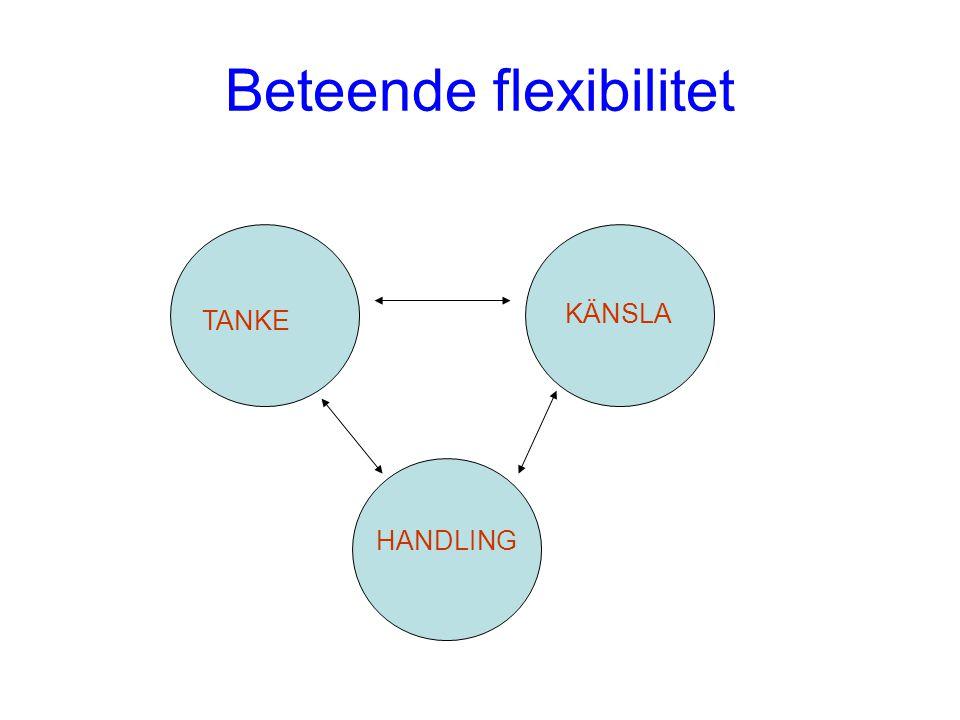 Beteende flexibilitet TANKE KÄNSLA HANDLING