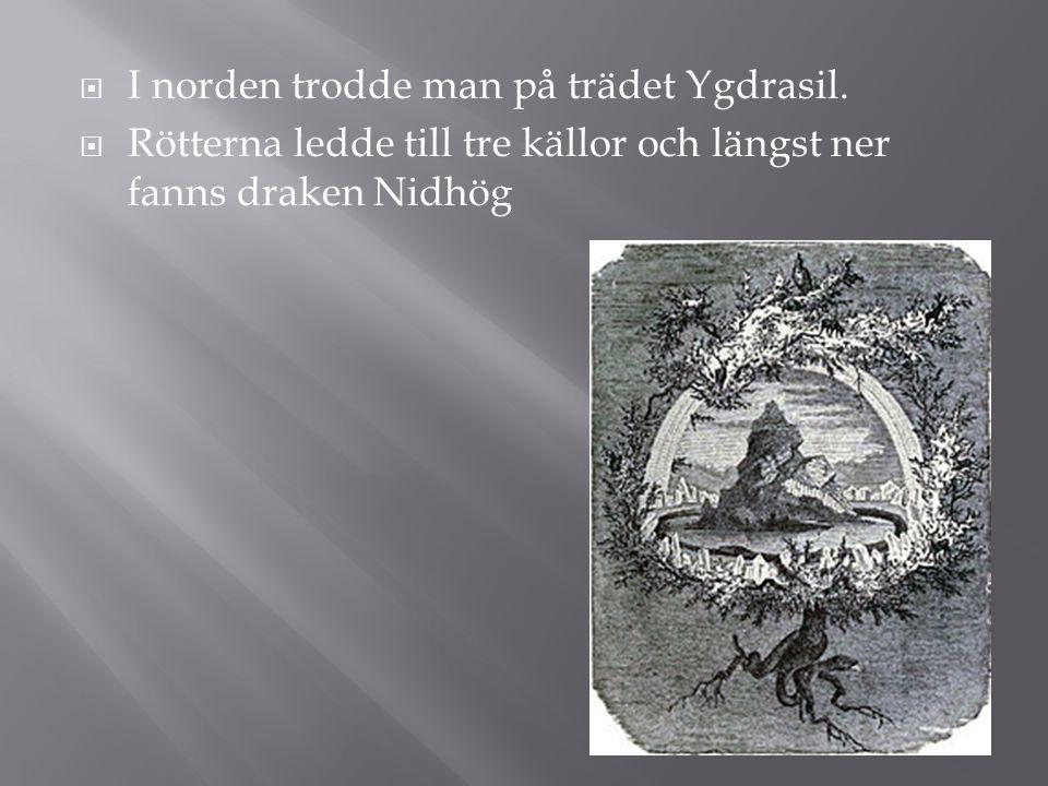  I norden trodde man på trädet Ygdrasil.  Rötterna ledde till tre källor och längst ner fanns draken Nidhög