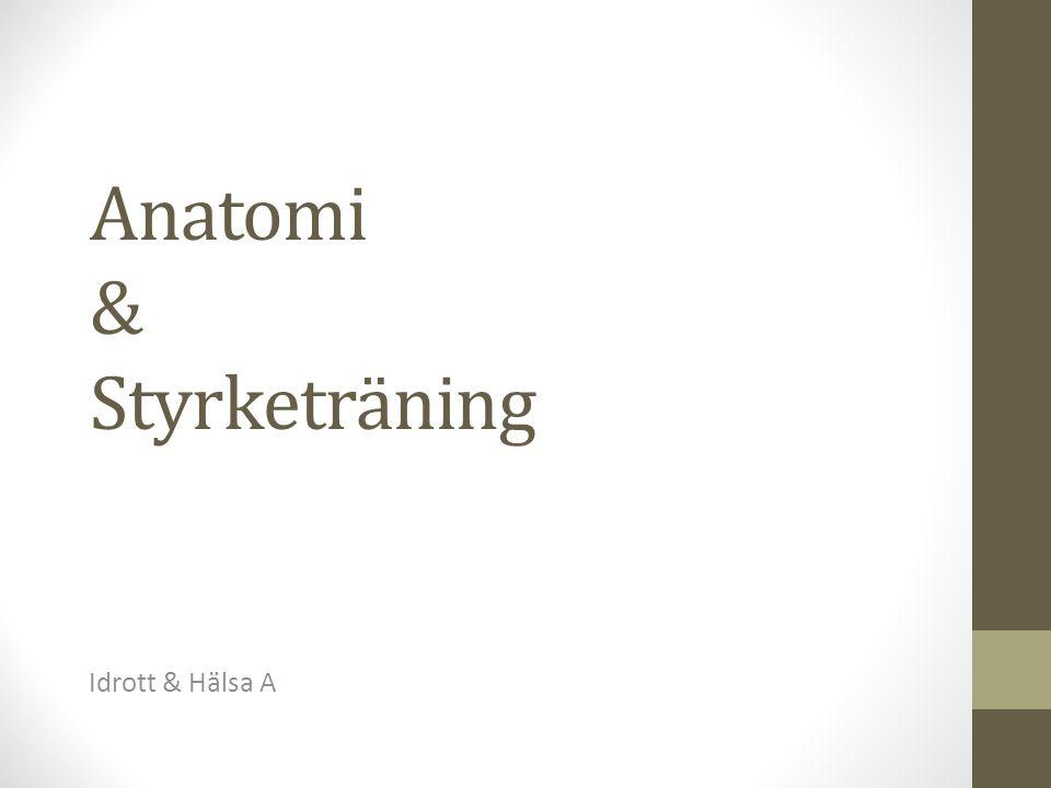 Anatomi & Styrketräning Idrott & Hälsa A