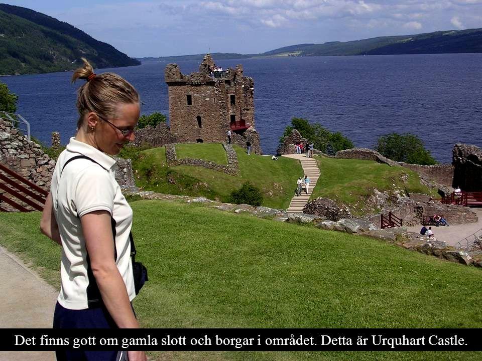 Utanför Urquhart Castle är Loch Ness som djupast.230 meter.