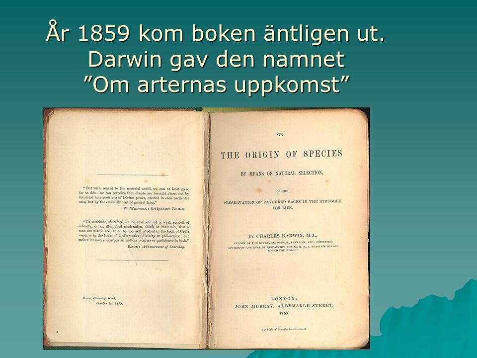 53 737 maskar Ja, Darwin var mycket noggrann. Så när han skrev en bok om sina upptäckter på Galapagos ville han vara säker på att han inte slarvade. S