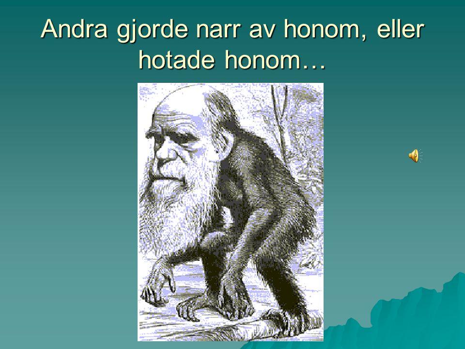 I stället för beröm utsattes Darwin för kritik, både från kyrkan och allmänheten