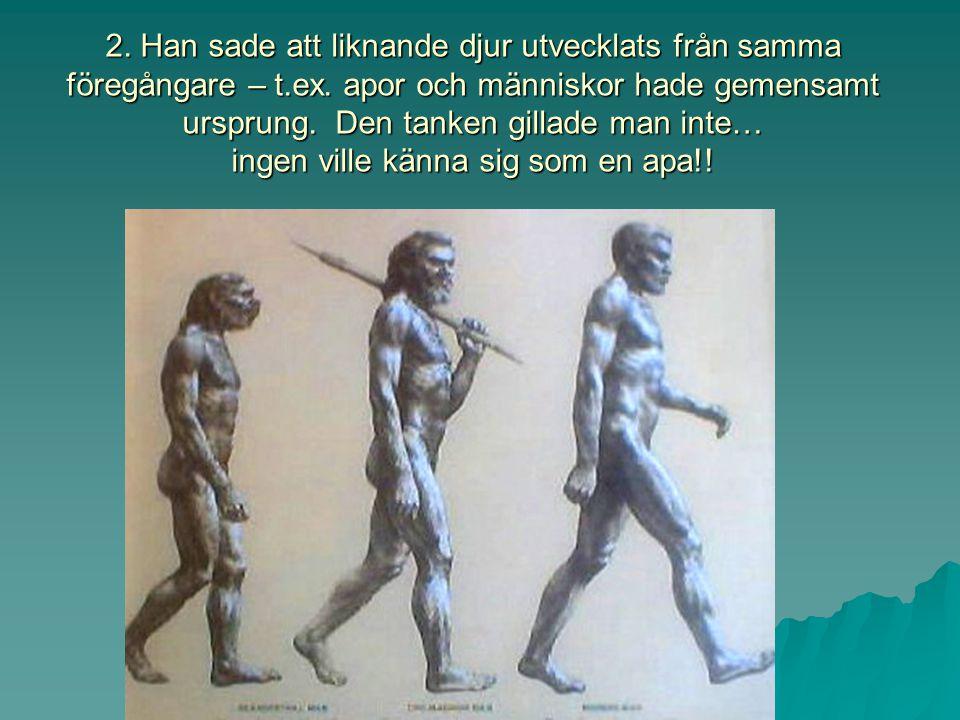 1. Han påstod att det var NATURLIGT URVAL som skapade arter, snarare än Gud