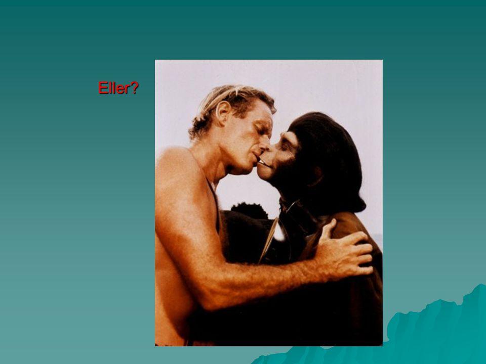 2. Han sade att liknande djur utvecklats från samma föregångare – t.ex. apor och människor hade gemensamt ursprung. Den tanken gillade man inte… ingen