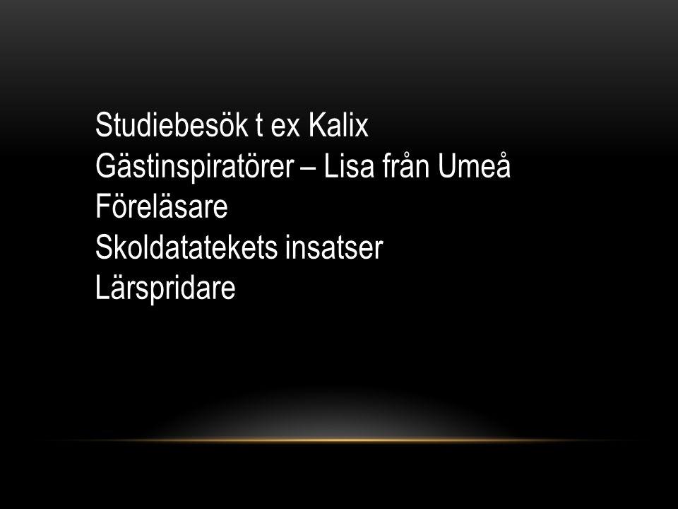 Studiebesök t ex Kalix Gästinspiratörer – Lisa från Umeå Föreläsare Skoldatatekets insatser Lärspridare
