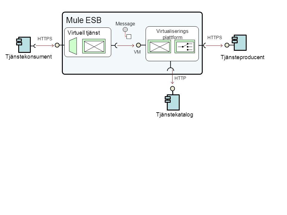 Virtualiserings plattform VM Tjänsteproducent Virtuell tjänst HTTPS Tjänstekonsument HTTPS Mule ESB Message Tjänstekatalog HTTP