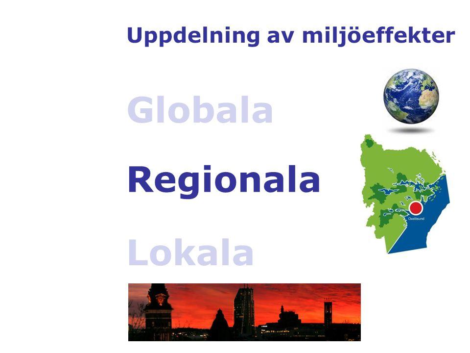 Uppdelning av miljöeffekter Globala Regionala Lokala