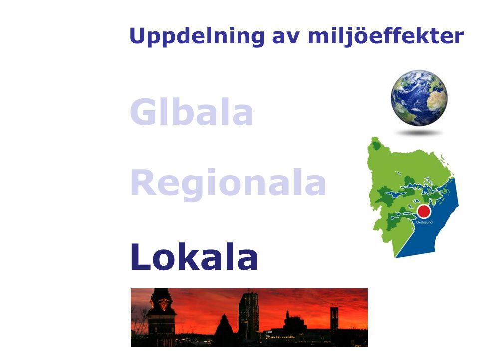 Uppdelning av miljöeffekter Glbala Regionala Lokala