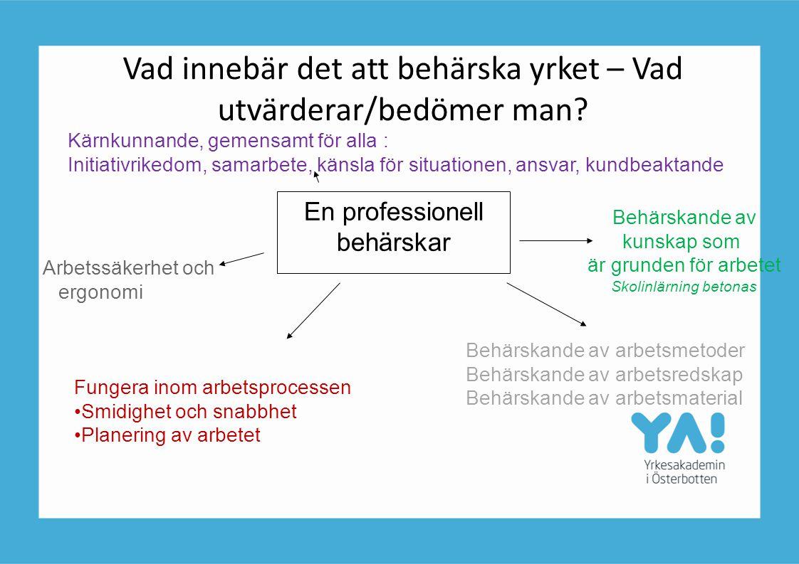 Vad innebär det att behärska yrket – Vad utvärderar/bedömer man? En professionell behärskar Kärnkunnande, gemensamt för alla : Initiativrikedom, samar