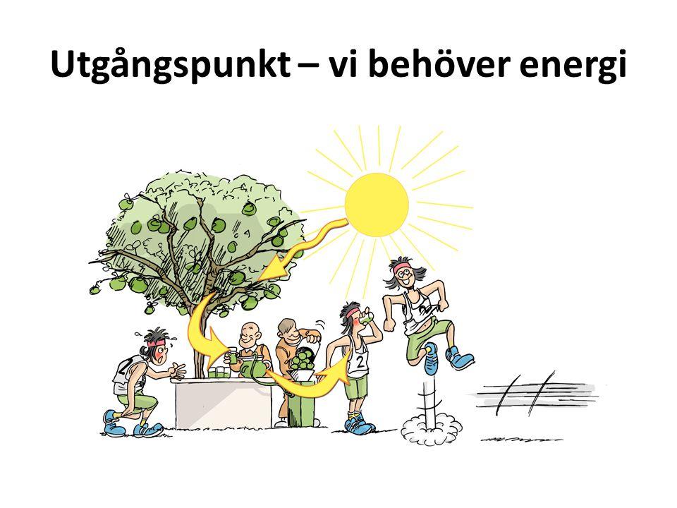 Utgångspunkt – vi behöver energi