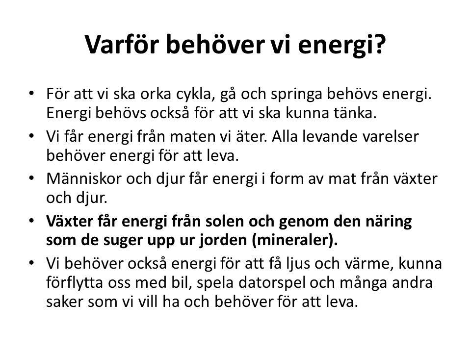 Varför behöver vi energi? För att vi ska orka cykla, gå och springa behövs energi. Energi behövs också för att vi ska kunna tänka. Vi får energi från