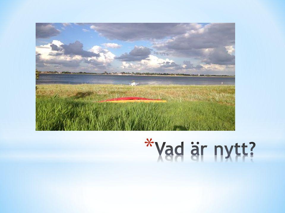 * Språkförhållanden i Sverige och övriga Norden, till exempel språklagstiftning, minoritetsspråk och dialekter.