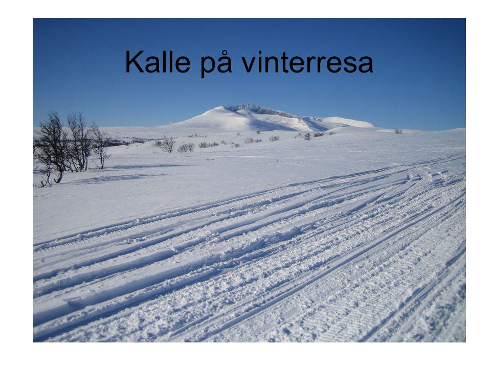 Kalle på vinterresa