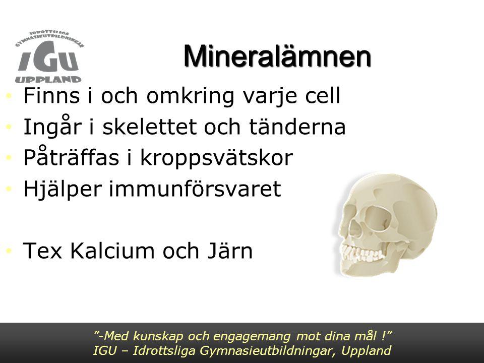 """Mineralämnen Finns i och omkring varje cell Ingår i skelettet och tänderna Påträffas i kroppsvätskor Hjälper immunförsvaret Tex Kalcium och Järn """"-Med"""
