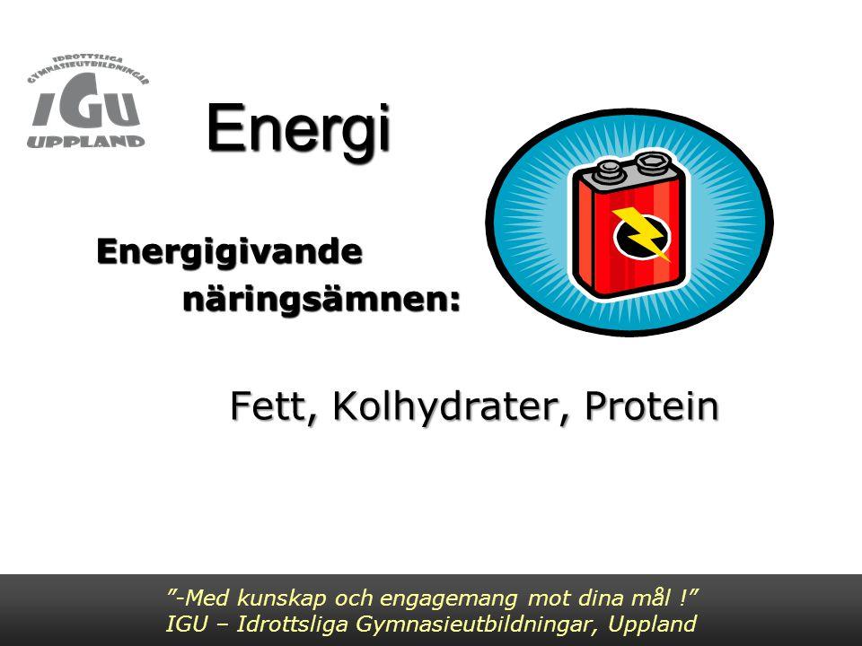 Energikällor Energikällor -Med kunskap och engagemang mot dina mål ! IGU – Idrottsliga Gymnasieutbildningar, Uppland Energigivande näringsämnen fett kolhydrater protein Vid förbränning ger 1 g fett = 9kcal 1 g kolhydrat = 4kcal 1 g protein= 4kcal 1 g alkohol= 7kcal