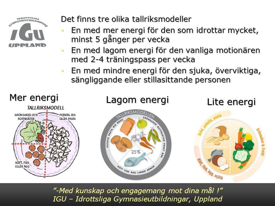 Det finns tre olika tallriksmodeller En med mer energi för den som idrottar mycket, minst 5 gånger per vecka En med mer energi för den som idrottar my