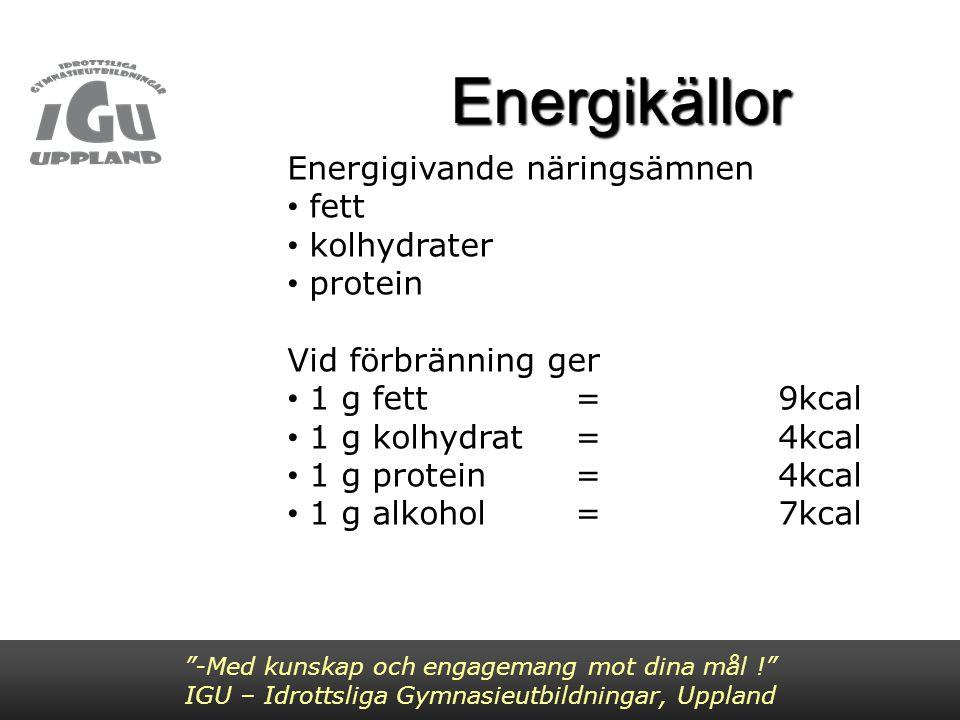 Energibalans Intag = Förbrukning Negativ energibalans Positiv energibalans -Med kunskap och engagemang mot dina mål ! IGU – Idrottsliga Gymnasieutbildningar, Uppland