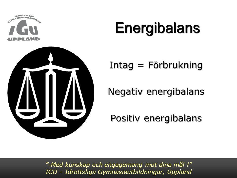 Energibehov -Med kunskap och engagemang mot dina mål ! IGU – Idrottsliga Gymnasieutbildningar, Uppland Påverkas av: aktivitet och dess intensitet kön ålder