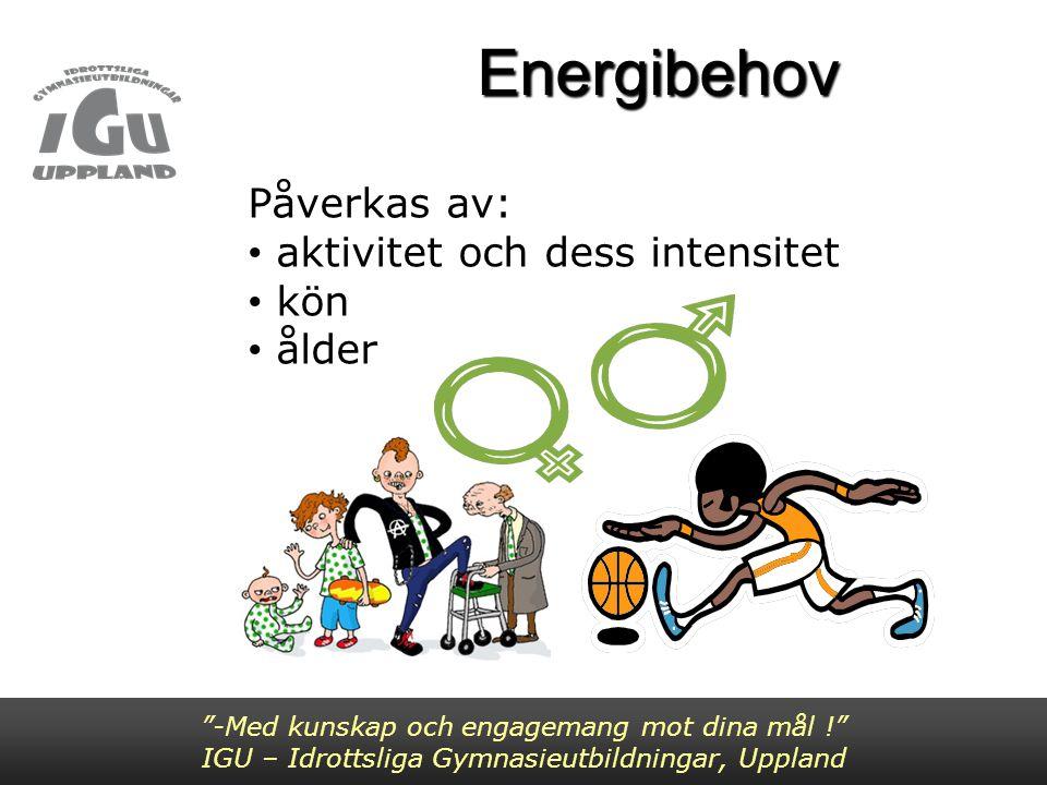 Räkna ut ditt energibehov -Med kunskap och engagemang mot dina mål ! IGU – Idrottsliga Gymnasieutbildningar, Uppland 1.Först måste du räkna ut ditt BMR 2.Sedan ditt energibehov för respektive aktivitet samt totalt energibehov under en dag med hjälp av MET- värden 3.Du kan även räkna ut ditt totala energibehov under en dag med hjälp av PAL-värden