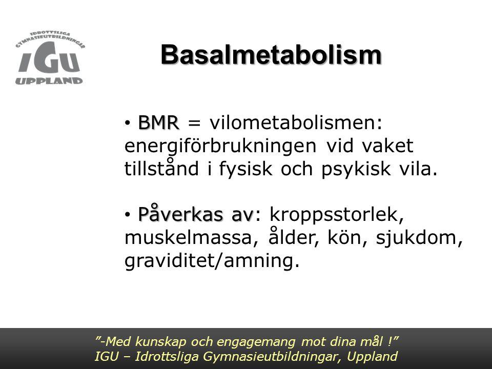 """""""-Med kunskap och engagemang mot dina mål !"""" IGU – Idrottsliga Gymnasieutbildningar, Uppland BMR BMR = vilometabolismen: energiförbrukningen vid vaket"""