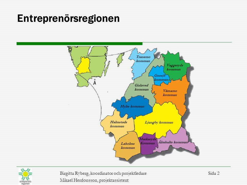 Projekt Regeltillämpning i praktiken Svenska regelsystem beslutas på nationell och EU nivå.