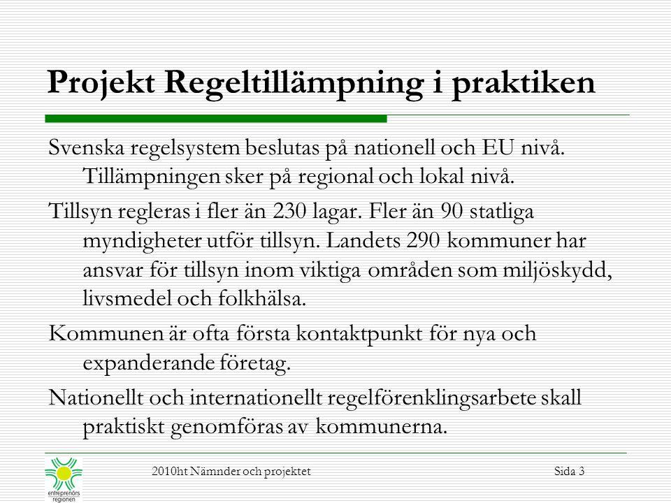 Projekt Regeltillämpning i praktiken Svenska regelsystem beslutas på nationell och EU nivå. Tillämpningen sker på regional och lokal nivå. Tillsyn reg
