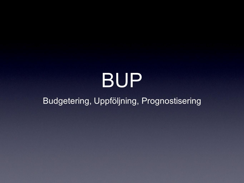 BUP Budgetering, Uppföljning, Prognostisering