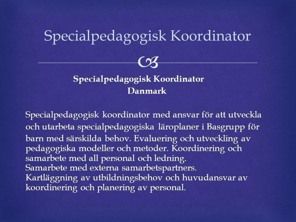  Specialpedagogisk Koordinator Danmark Specialpedagogisk koordinator med ansvar för att utveckla och utarbeta specialpedagogiska läroplaner i Basgrup