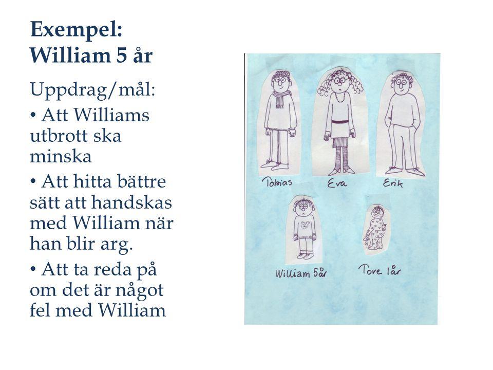 Exempel: William 5 år Uppdrag/mål: Att Williams utbrott ska minska Att hitta bättre sätt att handskas med William när han blir arg. Att ta reda på om