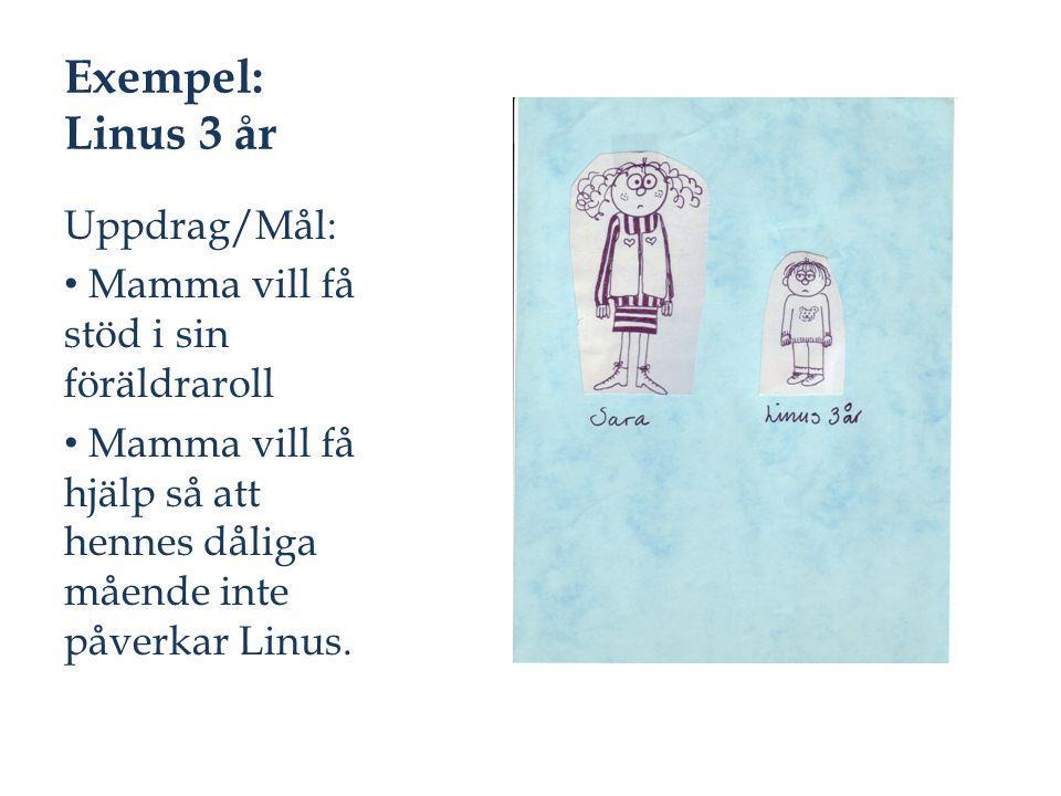 Exempel: Linus 3 år Uppdrag/Mål: Mamma vill få stöd i sin föräldraroll Mamma vill få hjälp så att hennes dåliga mående inte påverkar Linus.