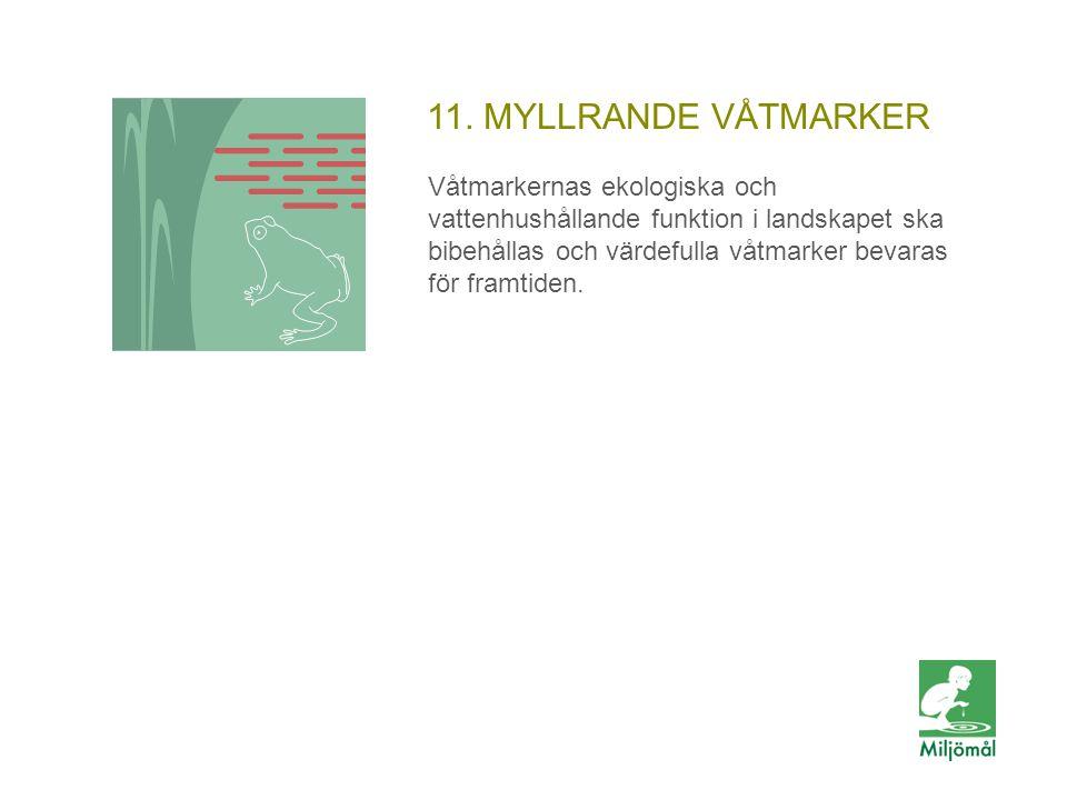 11. MYLLRANDE VÅTMARKER Våtmarkernas ekologiska och vattenhushållande funktion i landskapet ska bibehållas och värdefulla våtmarker bevaras för framti