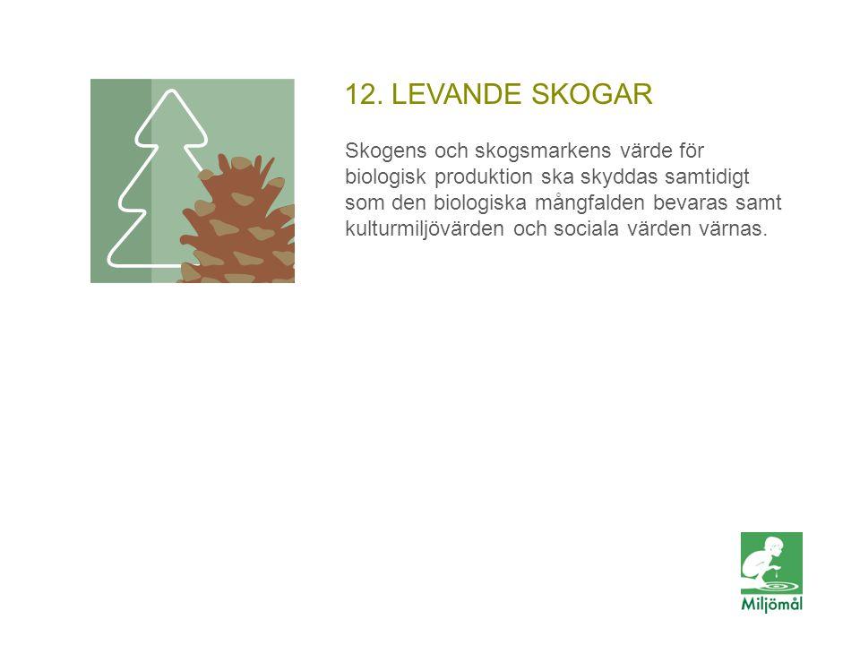 12. LEVANDE SKOGAR Skogens och skogsmarkens värde för biologisk produktion ska skyddas samtidigt som den biologiska mångfalden bevaras samt kulturmilj