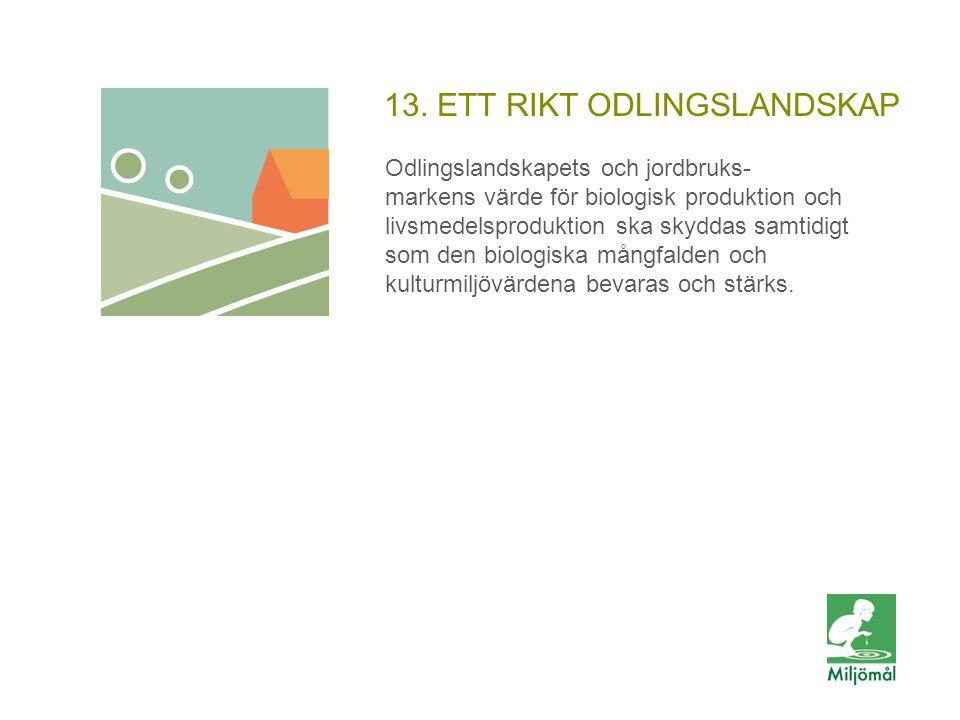 13. ETT RIKT ODLINGSLANDSKAP Odlingslandskapets och jordbruks- markens värde för biologisk produktion och livsmedelsproduktion ska skyddas samtidigt s