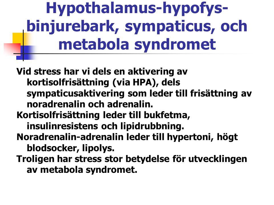 Hypothalamus-hypofys- binjurebark, sympaticus, och metabola syndromet Vid stress har vi dels en aktivering av kortisolfrisättning (via HPA), dels sympaticusaktivering som leder till frisättning av noradrenalin och adrenalin.