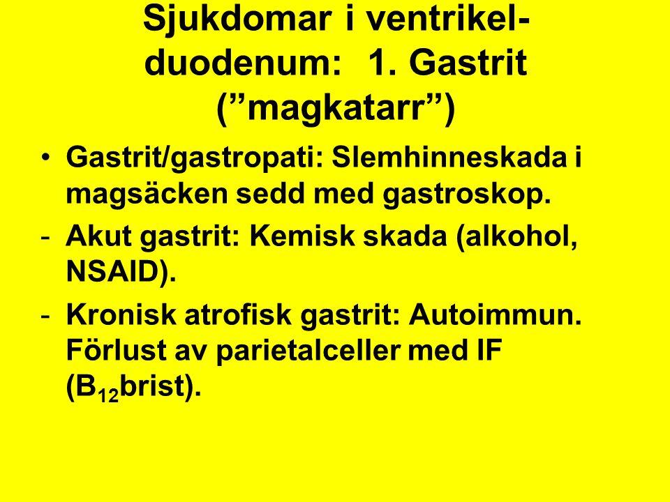 """Sjukdomar i ventrikel- duodenum: 1. Gastrit (""""magkatarr"""") Gastrit/gastropati: Slemhinneskada i magsäcken sedd med gastroskop. -Akut gastrit: Kemisk sk"""