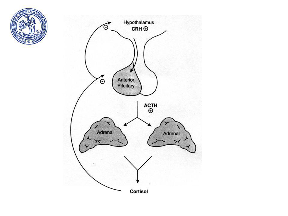 The hypotalamic-pituitary-adrenal axis Hypotalamus corticotrophin releasinghormone (CRH) Hypofysen corticoptrophin (ACTH) Binjurebark glukokortikoider, mineralokortikoid (RAAS)