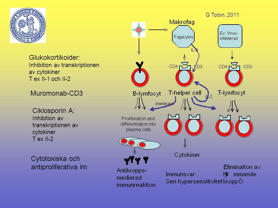 G Tobin, 2011 Antiinflammatorisk vs immunosuppressiv effekt Immunosuppressiva medel inhiberar cell- eller humoral-medierade immunsvar (adapterade reaktion) Antiinflammatoriska medel motverkar ickespecifika inflammatoriska celler såsom makrofager, neutrofiler, basofiler och mastceller (icke-adapterade reaktioner) Kortikosteroider har både antiinflammatorisk och immunosuppressiv effekt
