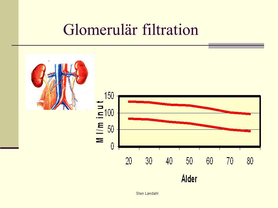 Sten Landahl Glomerulär filtration