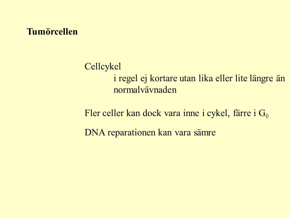 Tumörcellen Abnorm kommunikation med andra celler/stödje- vävnad Abnorma membranreceptorer Abnormt cytoskelett Abnorm cellsignalering membran-cytoplasma-kärna Abnorm metabolism Abnormt DNA för lite lika mycket för mycket Abnormt uttryck av gener för mycket mRNA, protein för litet mRNA, protein Abnorm DNA reparation Derangerad transkriptionskontroll Abnorm cellproliferation Abnorm celldöd apoptos